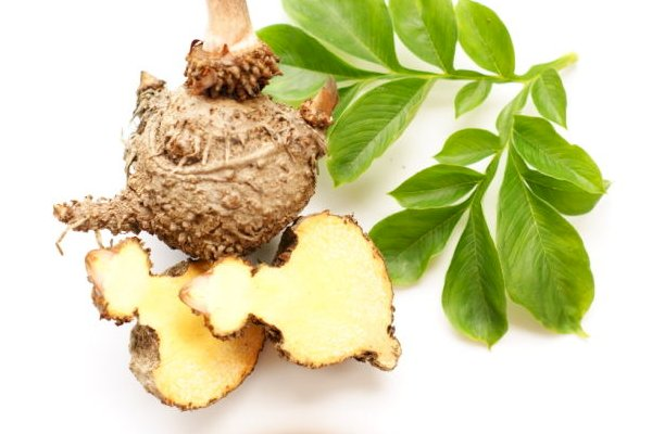 Glucomannan Explained – What is it and How Does it Work