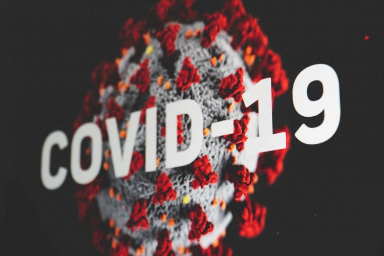 When Will a COVID-19 Vaccine Be Available — and Who Will Get It First?